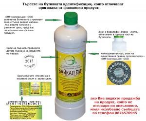 Baikal-indetifikazii1